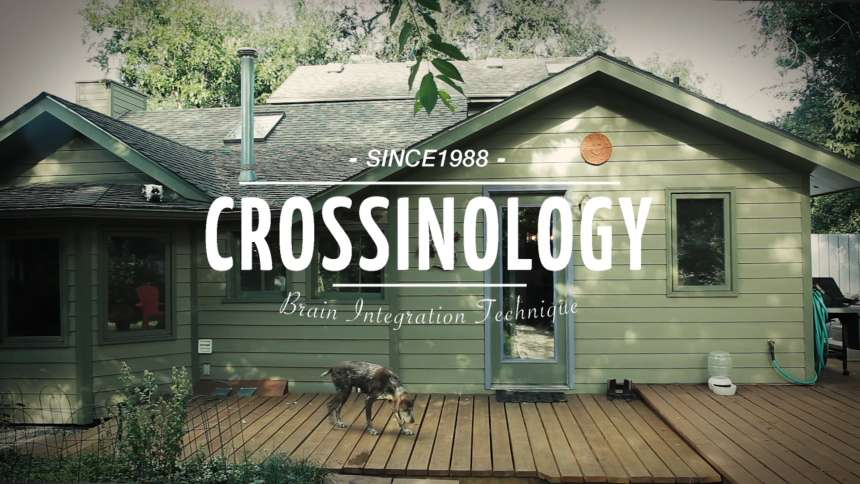 Crossinology | Meet Susan McCrossin